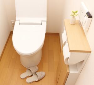 トイレのお掃除1室6,000円
