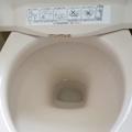 トイレの「サボったリング」